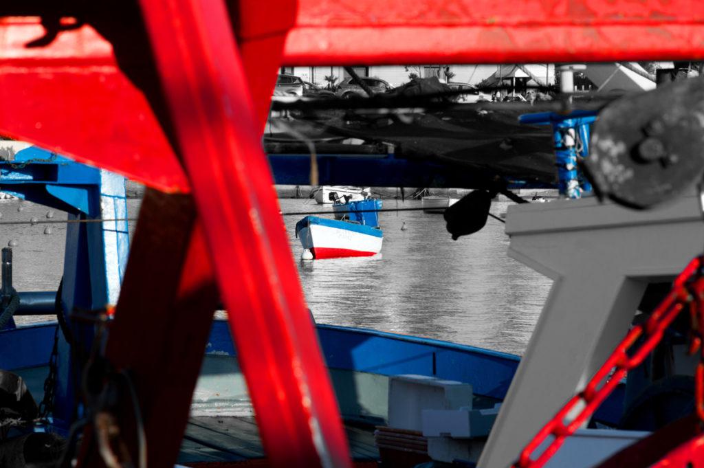 Concorso - Un manifesto per la festa del pescato 2017 - FOTO